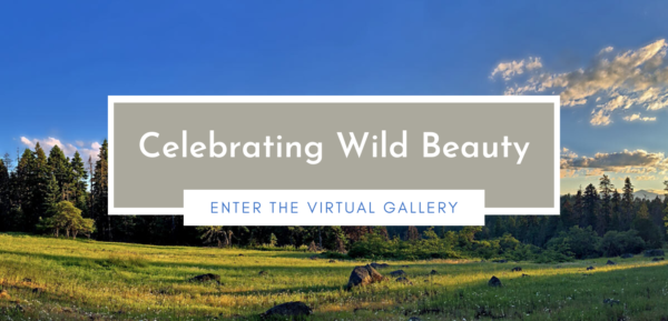 Portal to Celebrating Wild Beauty Virtual Gallery
