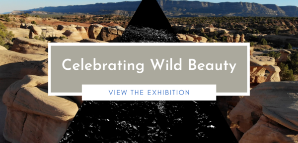 Celebrating Wild Beauty Portal